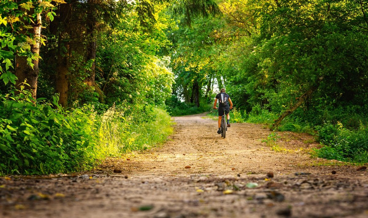 Wycieczka rowerowa na jesień